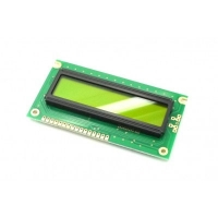 Display LCD 16x02 Verde sem Luz de Fundo (Back Light) WH-1602A-NYG-JT